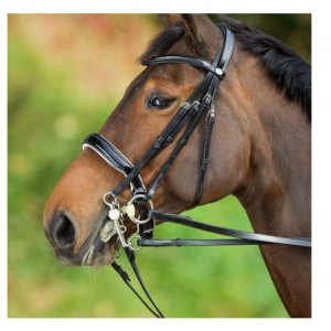 "Bride de dressage convertible cuir HFI ""Weymouth"""