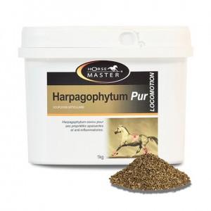 Harpagophytum Pur HORSE MASTER